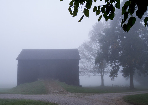 Barn in Fog #7