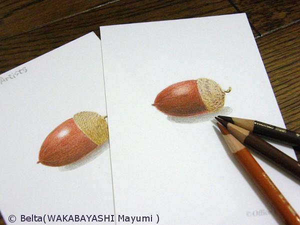 2013_05_10_acorn_01_s