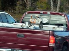 Work Pickup Truck