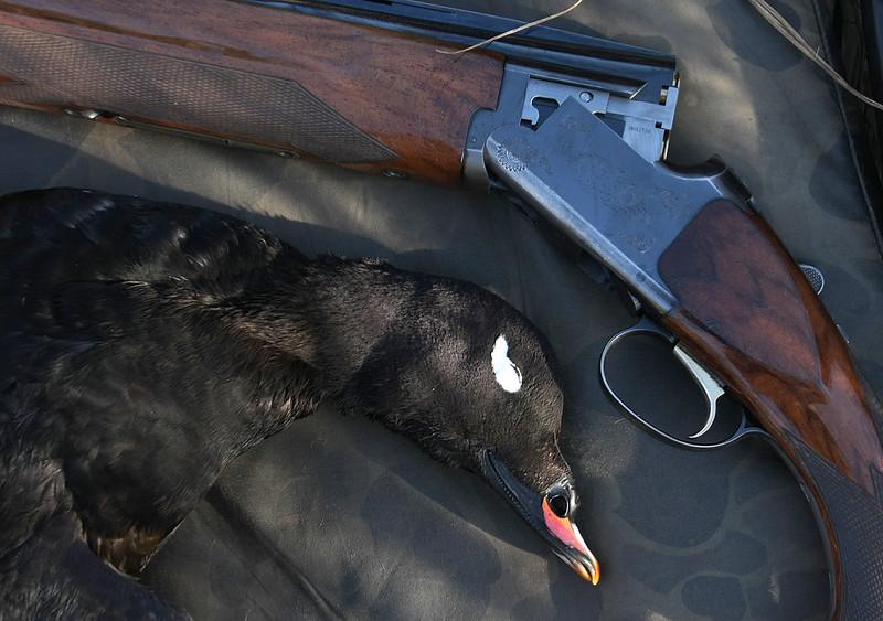 Browning o/u Waterfowl Gun | Refuge Forums