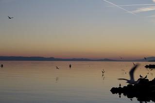 Изображение Jeunes-Rives вблизи Neuchâtel. schweiz switzerland suisse neuchâtel