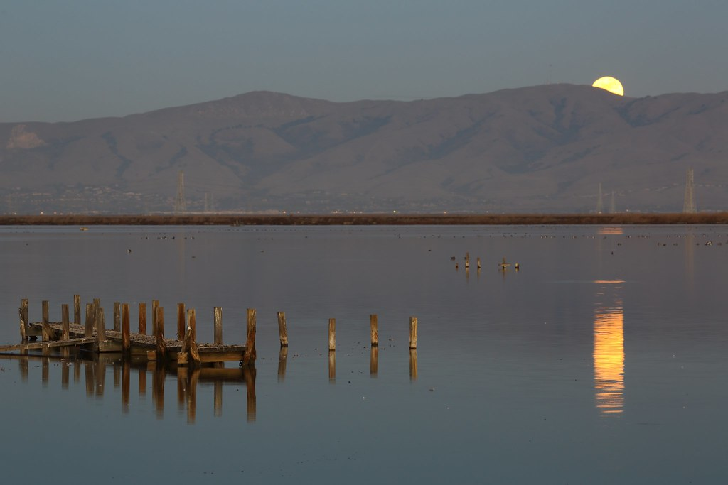 East Bay Moon Rise