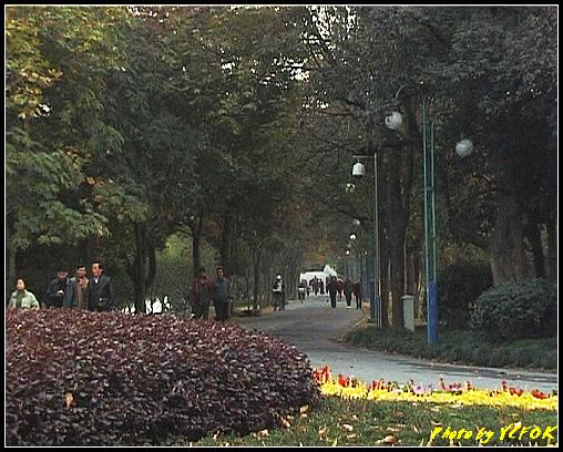 杭州 西湖 (其他景點) - 296 (西湖十景之 蘇堤 蘇堤上的影波橋)