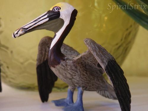 safari brown pelican