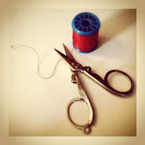 #fmsphotoaday February 25 - Cut