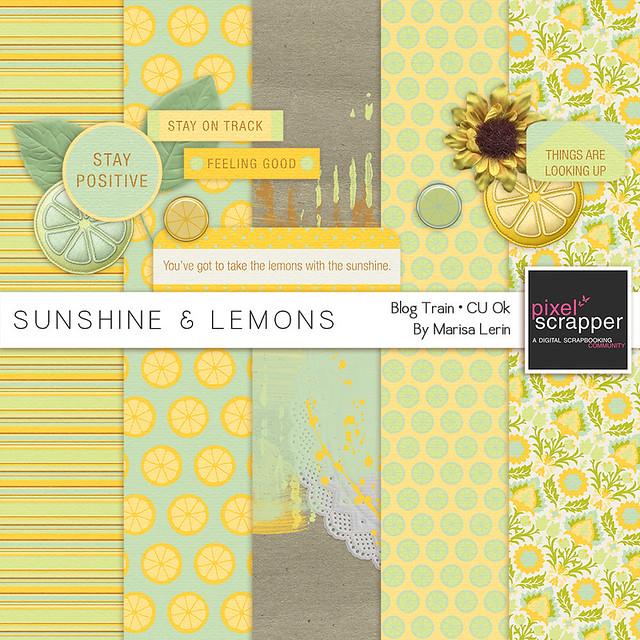 Sunshine & Lemons by Marisa Lerin