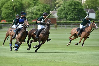 Tournoi d'Alliance au Polo Club de Chantilly