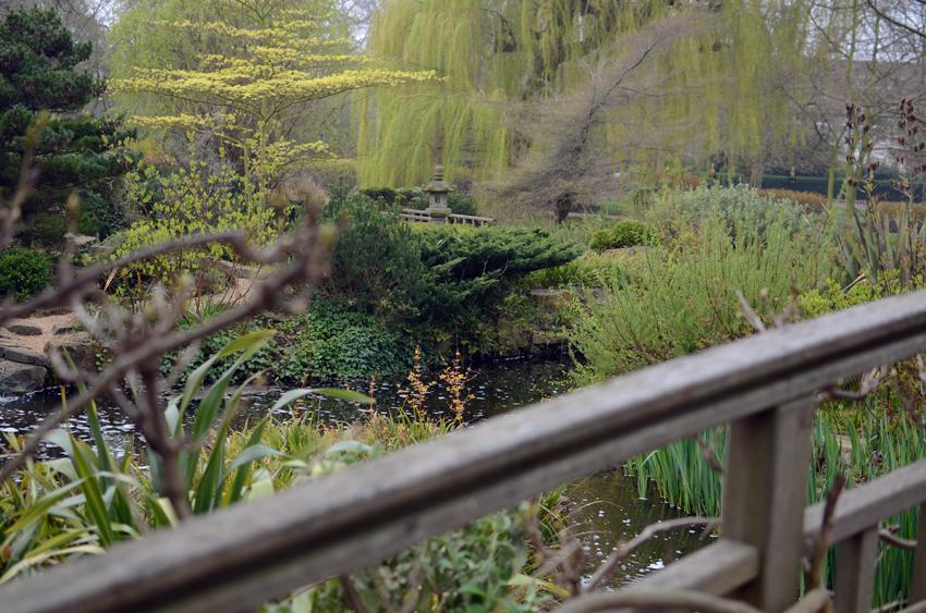 regent bridge lush