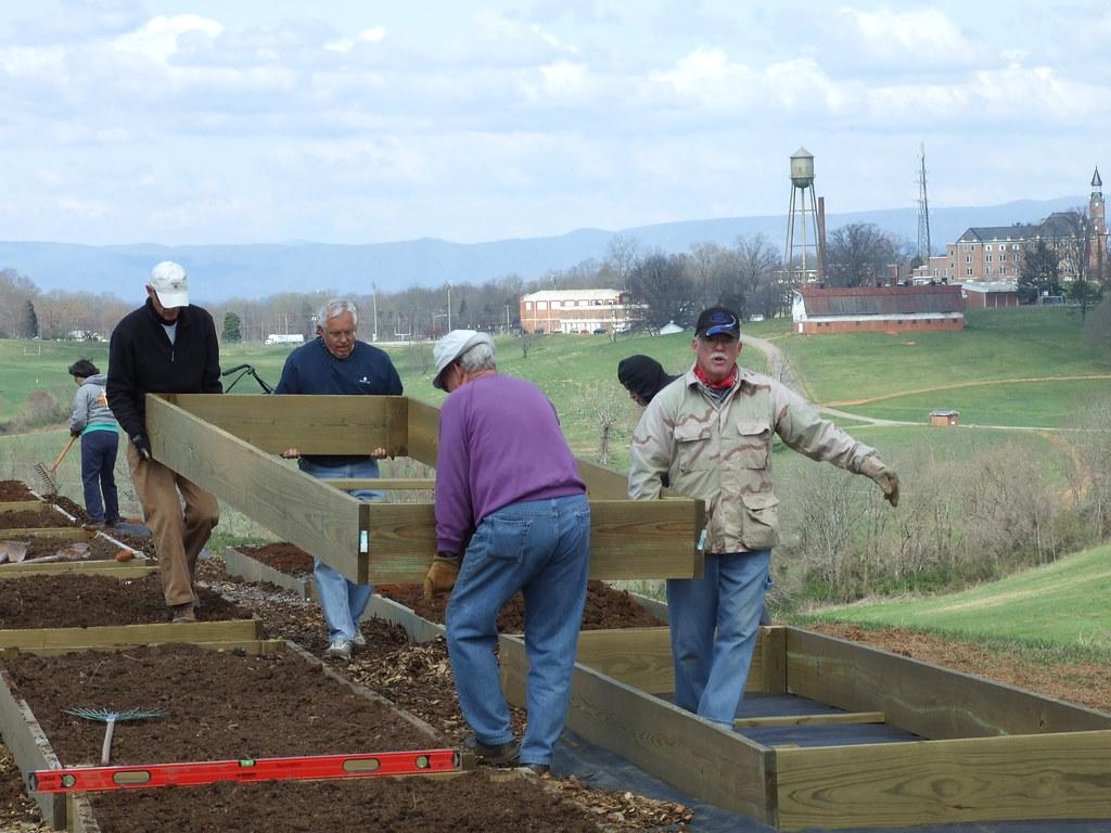 Building Com. Gdn.-Donna Teasley-CC-BY-SA.jpg