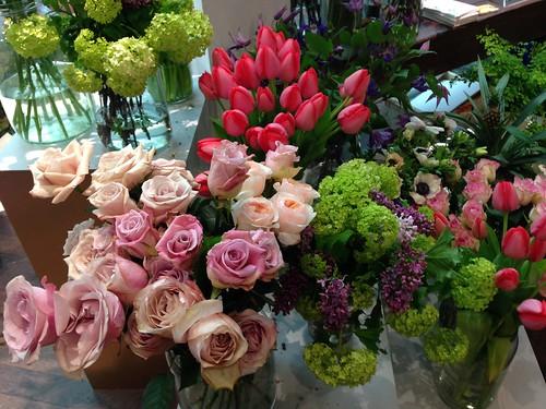 flower appreciation society hobbs