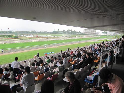 函館競馬場の一般席ライブシート