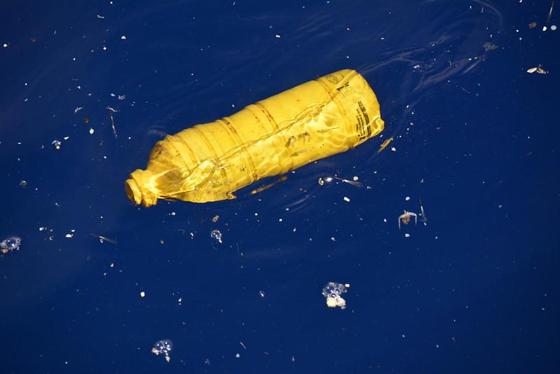 Ocean plastics & marine litter / Plásticos y basuras en el mar