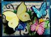 butterflyatc
