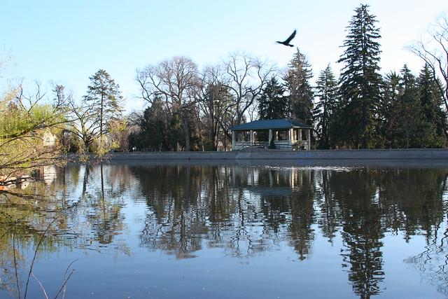 Glenmere Pond & Shelter
