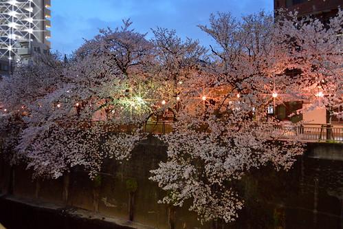 Evening  in Itabashi-ku