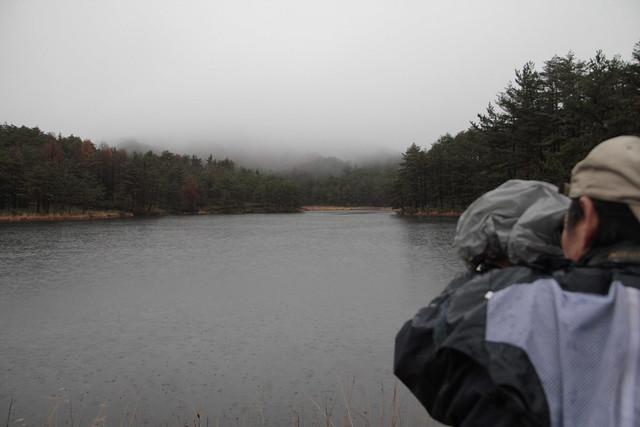 湖面を観察する上野先生.雨のせいか,一羽も鳥はいなかった.