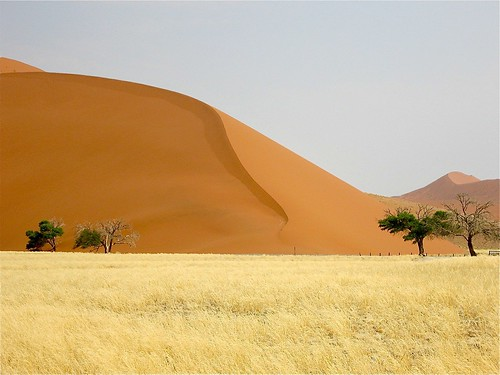 africa travel sunset sun grass yellow sunrise dawn sand dunes namibia sanddunes namibdesert mygearandme