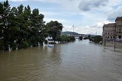 natural disaster, flood, river, disaster, waterway,