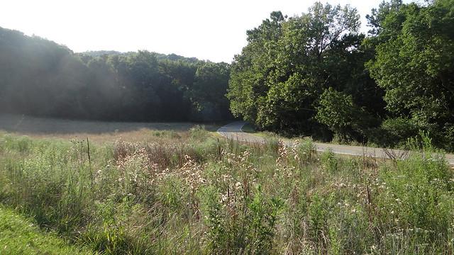 DSC06611 prairie 240813 Lone Elk Park