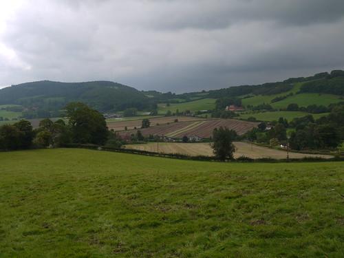Woodbury Hills