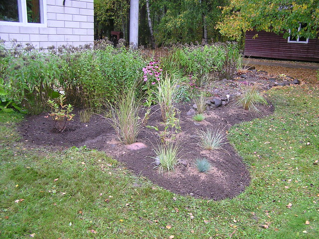 New bed for grasses