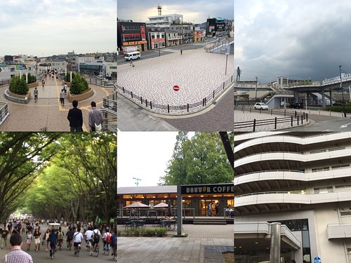 東海大学前駅と東海大学キャンパス