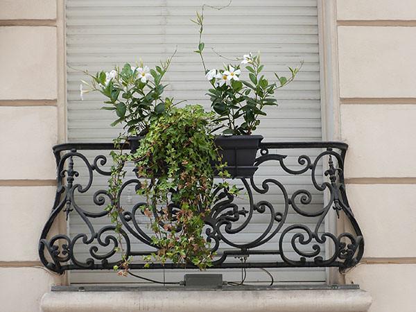 fleurs sur balcon