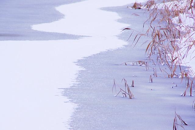 凍結のため池2