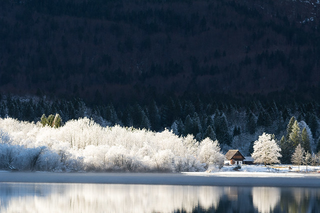 #flickr12days Lake Bohinj, Slovenija