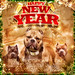 Happy New Year Rowdoggs Banner GFX by jtwogfx