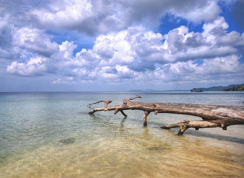travel sea cloud india color colour beach colors sunrise island golden nikon paradise honeymoon colours bluesky explore cloudscape andaman nicobar travelphotography andamannicobarislands havelockisland nikond300