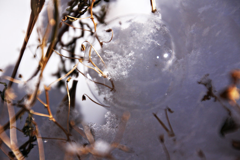 frozen bubble-1sm