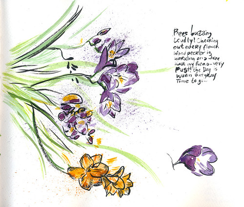 March 2014: Freesia Flowers