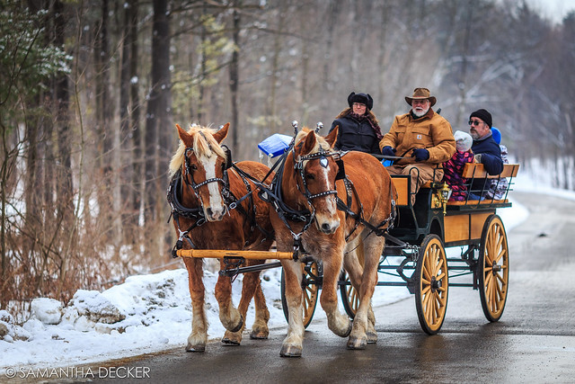 Horse Drawn Carriage at the Frost Faire