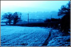 Frosty Frankley.