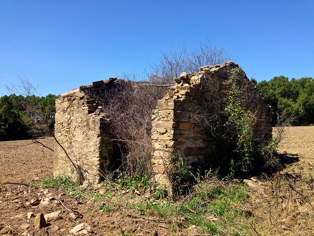 Farm Ruin