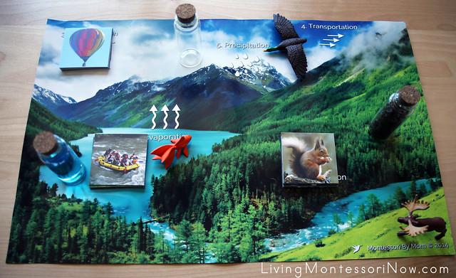 Adding Safari Ltd. Animals to the Land, Water, Air Poster