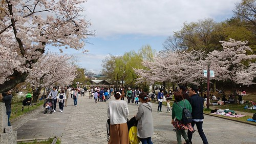 Japan 2883