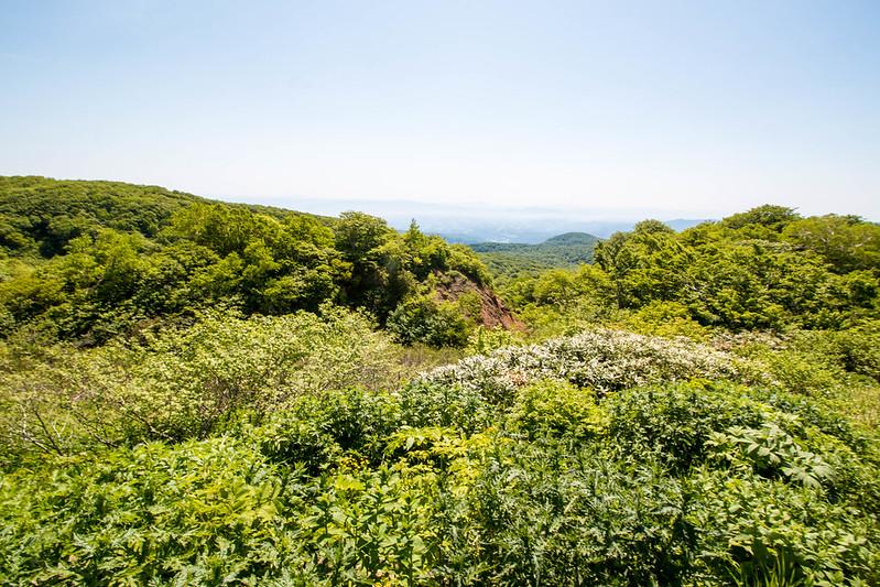 20160611-焼石岳-0323.jpg