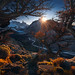 The Elements of Life by Max Rive - Photo Tours