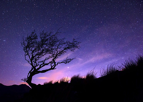'Raised Arms To The Stars' - Nant Gwynant, Snowdonia