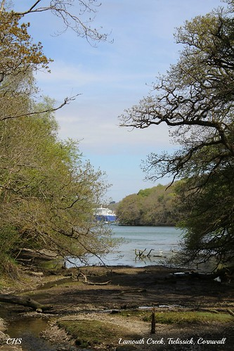Trelissick, Cornwall by Stocker Images