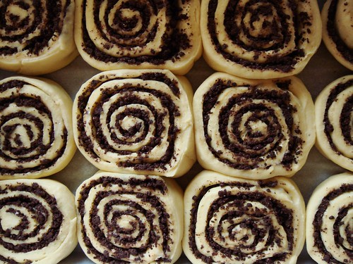 Chocolate Swirl Buns: Proofed