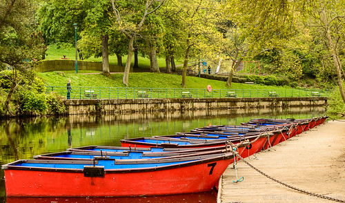 Boats at Morpeth