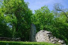 Ruins - Doon Mill, Ontario