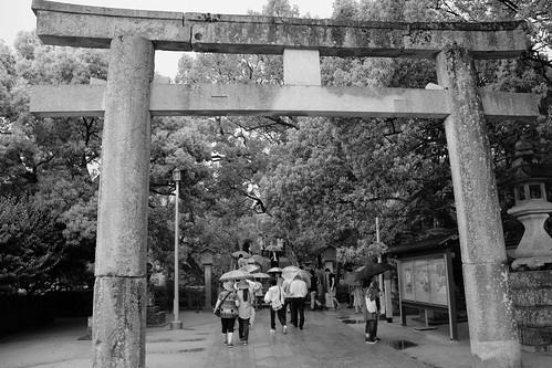 Torii gateway #4