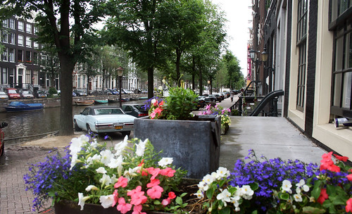 amsterdam_flower_home2