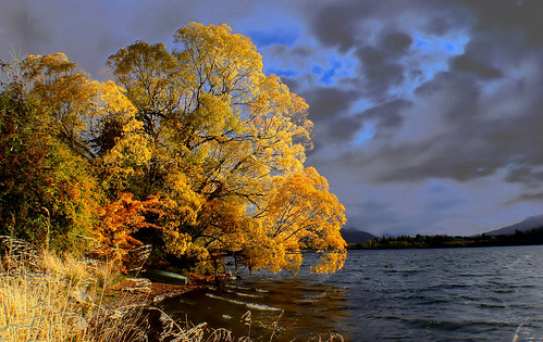 Autumn Lake Hayes.Otago.NZ