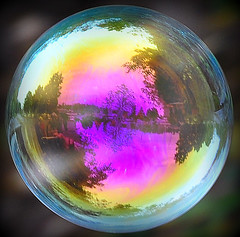 Reflections of fall captured in soap bubble floating in the air Bayfield Photo Festival.