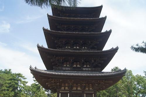 Nara Deer Park DSC03524